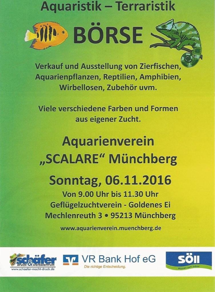 boerse_20161106